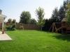 20-Backyard 2